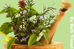 Herbs and plants ground into medicine