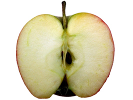 The inside of a ripe apple